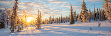 Snowy Panoramic Landscape At Sunset, Frozen Trees In Winter In Saariselka, Lapland, Finland