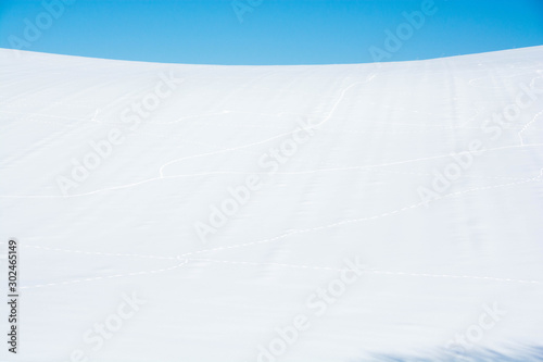 Obraz na plátne 雪原と青空