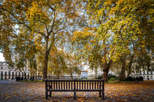 A Park Bench Among Autumn Leaves On Fitzroy Square, Fitzrovia, London's West End
