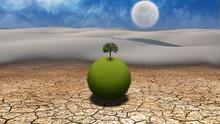 Grassy Globe With Tree In Desert