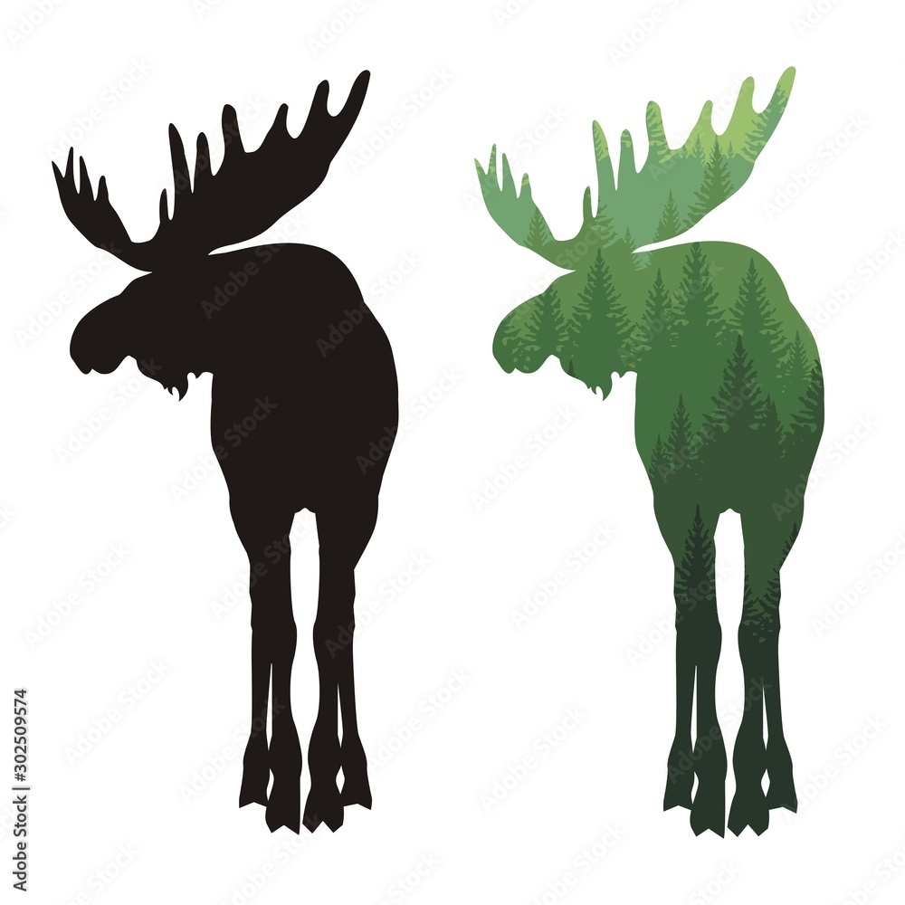 Fototapeta Silhouette of a moose with horns