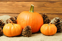 Pumpkins With Fall Flowers Arranged On A Rustic Wooden Background. Fall Background