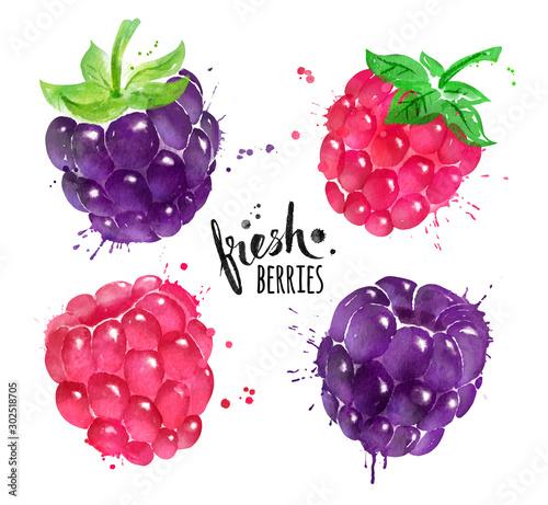 Fototapeta Watercolor set of blackberry and raspberry