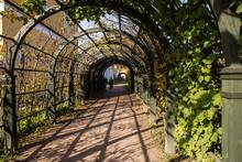 The Arched Corridor (garden Pe...