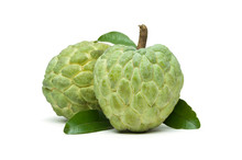 Custard Apple Or Sugar Apple, Two Whole Ripe Exotic Tropical Fruits With Green Leaves Isolated On White Background, Healthy Food, Diet And Vegetarian Nutrition