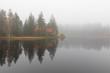 Etang de la Gruère: Allein am stillen Moorsee
