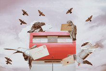 Mail Delivery Service