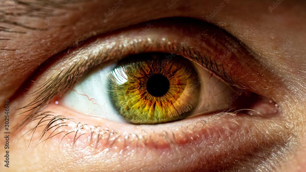Fototapeta close up of human eye