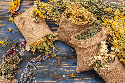 Obraz Herbal harvest collection and bouquets of wild herbs. Alternative medicine. Natural pharmacy, self-care concept - fototapety do salonu