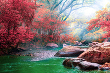 Hot Springs Onsen Natural Bath Surrounded By Red-yellow Leaves. In Fall Leaves Fall .Waterfall Among Many Foliage, In The Fall Leaves Leaf Color Change.