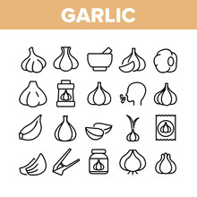 Garlic Spicy Vegetable Collection Icons Set Vector Thin Line. Smell From Mouth And Garlic Press, Organic Plant And Bottle With Spice Concept Linear Pictograms. Monochrome Contour Illustrations