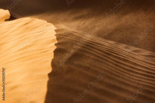 Obraz na plátne Windswept desert sand dunes.