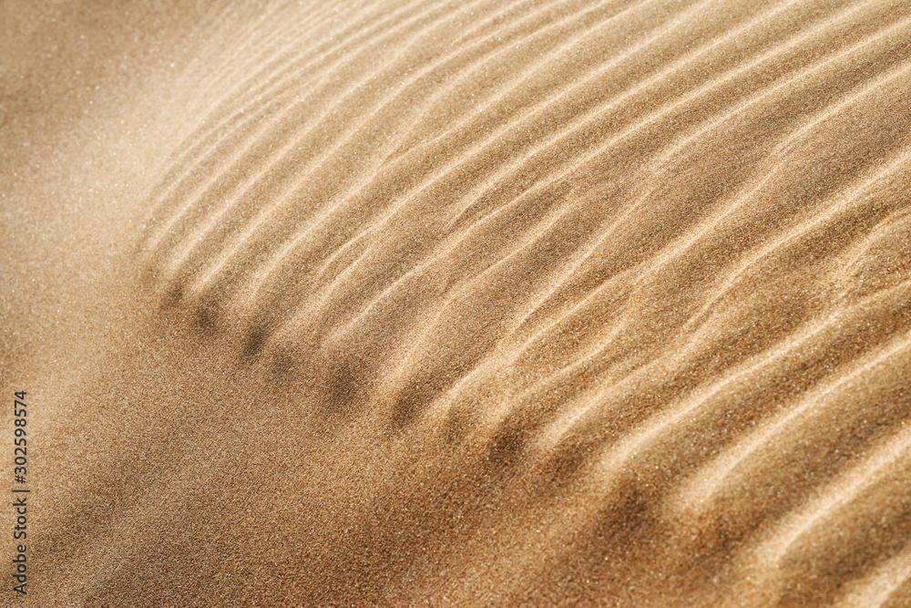Fototapety, obrazy: Abstract closeup of desert sand pattern in the Sahara desert of Morocco.
