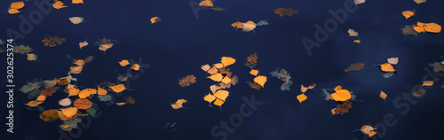 Foto auf Leinwand Wasserfalle abstract background with autumn leaves