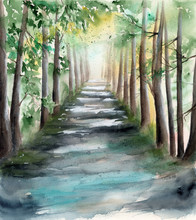 Watercolor Picture Of A Sunl...