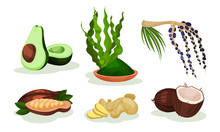Set Of Exotic Fruits And Plant...
