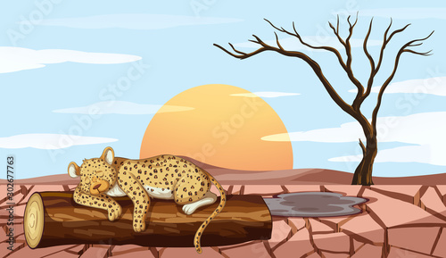 Poster Jeunes enfants Background scene with tiger and drought