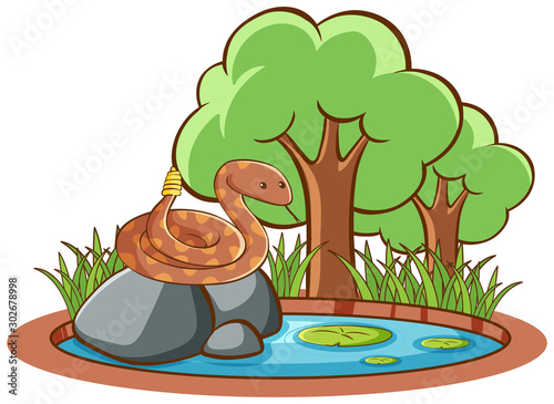 Poster Jeunes enfants Isolated picture of snake on the rock