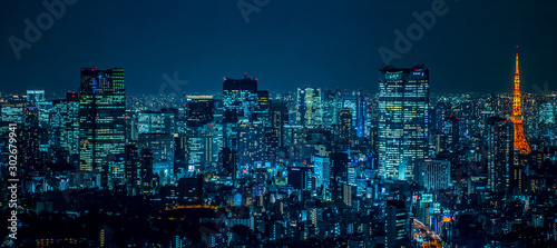 東京都市風景 夜景 Night view of Tokyo Japan Wallpaper Mural