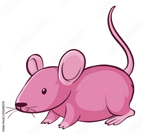 Foto op Plexiglas Kids Pink rat on white background