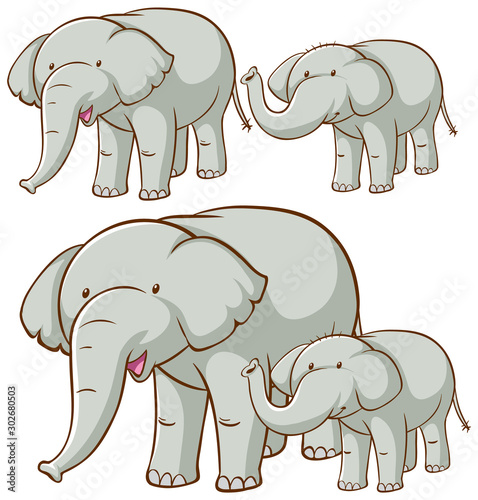 Poster de jardin Jeunes enfants Isolated picture of gray elephants