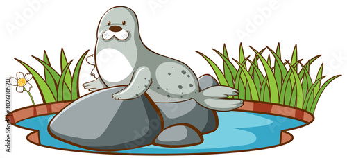 Poster de jardin Jeunes enfants Isolated picture of seal in the pond