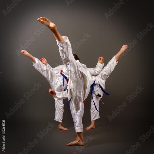 three karate girls Canvas Print