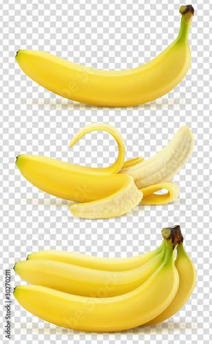 Bananes vectorielles 5 Canvas Print