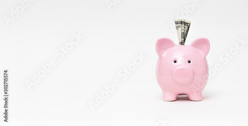 Fototapeta Piggy bank with dollar on white background obraz