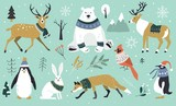 Fototapeta Fototapety na ścianę do pokoju dziecięcego - Set of Christmas animals in the forest, bear, fox, hare, reindeer, penguin. Scandinavian style.Winter animals in a sweater and scarfs. Hand drawn characters cartoon flat design.