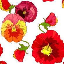 Red And Orange Pansies, Pansy Viola Flowers. Seamless Vector Pattern