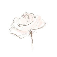 Beautiful Flower, Painted Rose...