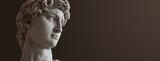 David sculpture by Michelangelo. Close up with dark background. (left version)
