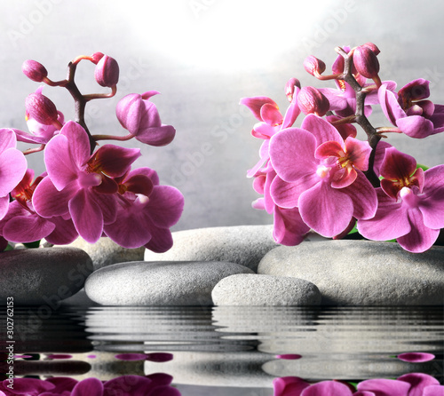 Fototapeta Composition with spa stones, orchid pink flower on grey background. obraz