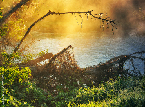 Foto auf Leinwand Orange picturesque spring dawn. foggy morning in the river valley
