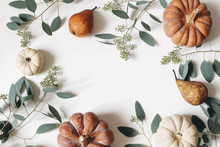 Autumn Floral Frame, Web Banner. Garland Of Berry Eucalyptus Leaves, Branches, Pear Fruit, Orange And White Pumpkins Isolated On White Table Background. Fall, Thanksgiving Design. Flat Lay, Top View.