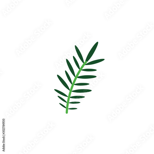 acacia branch foliage nature leaf icon flat Wallpaper Mural