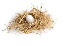 An Egg Lying In Straw In A Hen...
