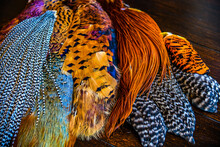 A Close Up Of Feathers Used For Tying Flies In Fly Fishing