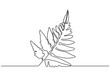 Fern leaves one line drawing. Continuous hand drawn sketch of plant botanical garden minimalism style.
