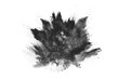 canvas print picture - particles of charcoal on white background,abstract powder splatted on white background,Freeze motion of black powder exploding or throwing black powder.