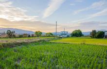 田舎風景 滋賀県