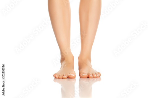 Fotografía  Beautifully groomed female feet on a white background