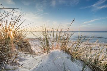 Fototapeta Popularne strand
