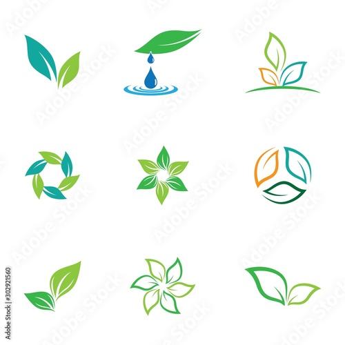 Fotomural  Leaf symbol vector icon