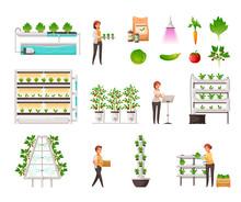 Greenhouse Farming Set