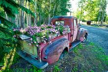 Pick Up Truck As Flower Garden