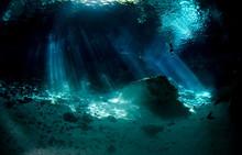 Cenote Mexique  Plongee