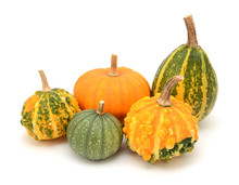 Group Of Decorative Gourds With Orange And Green Markings