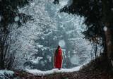 A Winter Fairytale